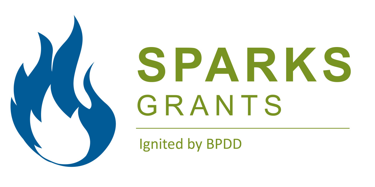 Announcing the 2019 SPARKS Grantees